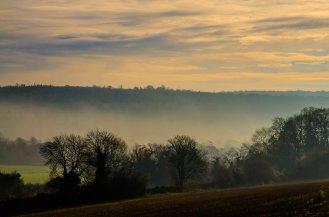 Bookham mist X