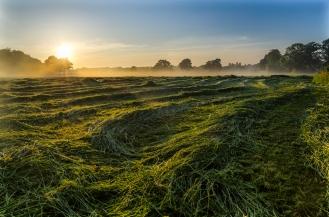Sunrise at Burstow