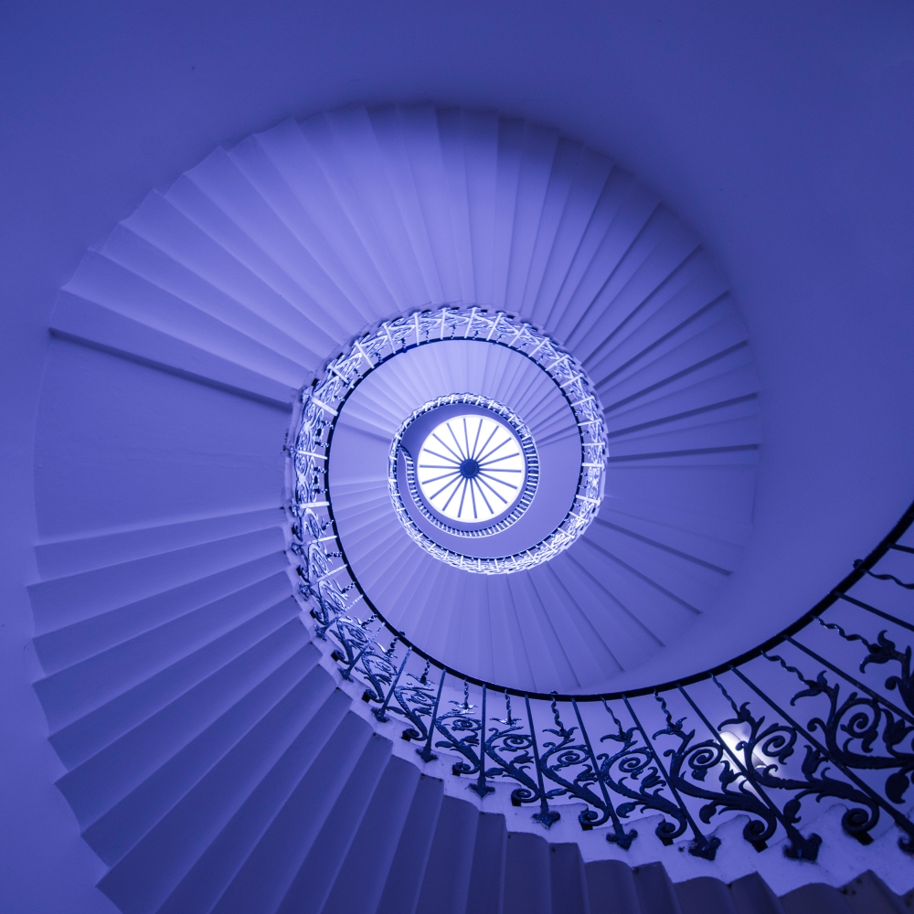Indigo in Blue