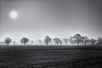 Misty morning B&W